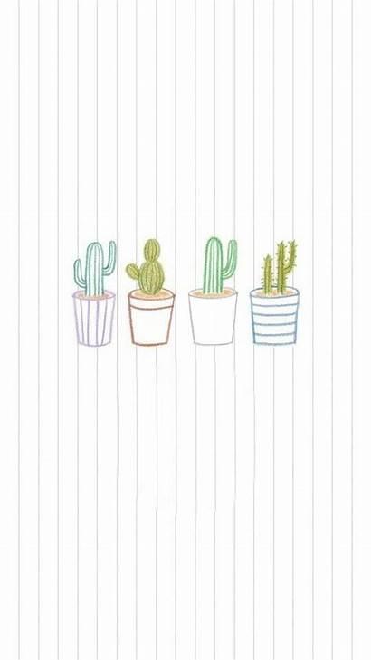 Cactus Backgrounds Wallpapers Uploaded User Garcia Screen