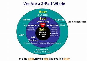 Spirit Mind Body Health  U2013 A Christian Perspective On God U2019s
