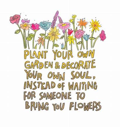 Mental Health Positive Quotes Flowers