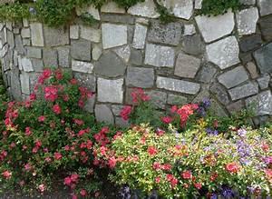 Mur De Fleurs : fleurs qui poussent dans les murs ~ Farleysfitness.com Idées de Décoration
