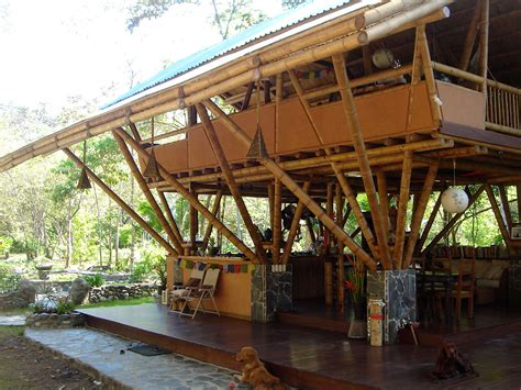 bamboo home decor modern bamboo house design philippines design for home