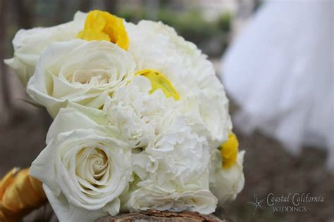 wedding flowers   budget elopements  small coastal