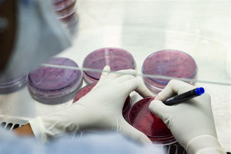 microbiology colleges  bangalore india