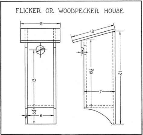 pileated woodpecker house plans furnitureplans