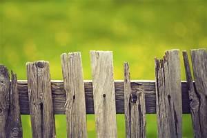 Barriere Pour Jardin : barri re jardin prix et mod les ooreka ~ Preciouscoupons.com Idées de Décoration