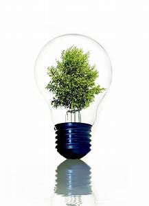 Led Light Bulbs : led bulbs the smarter lighting solution louie lighting blog ~ Yasmunasinghe.com Haus und Dekorationen