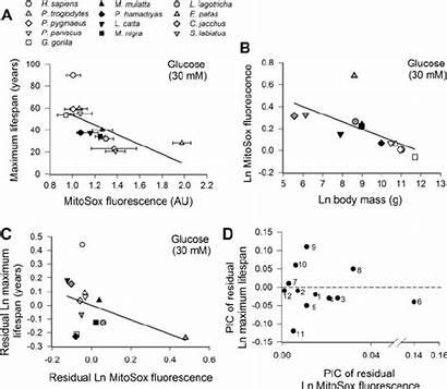 Inverse Relationship Span Maximum Between Publication Ln