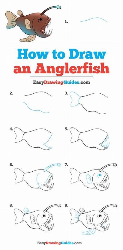 Angler Fish Draw Drawing Tutorial Easy Anglerfish