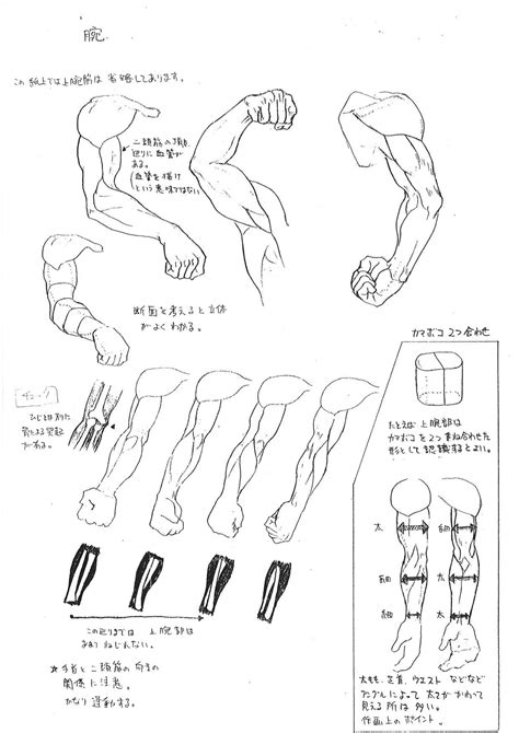 capcoms street fighter anatomy guide
