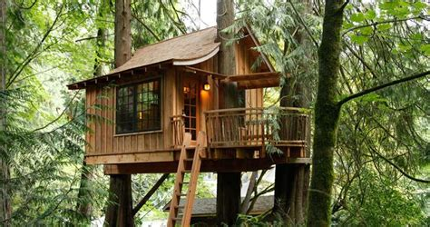 Treehouse Point, A Nature Hideaway Near Seattle