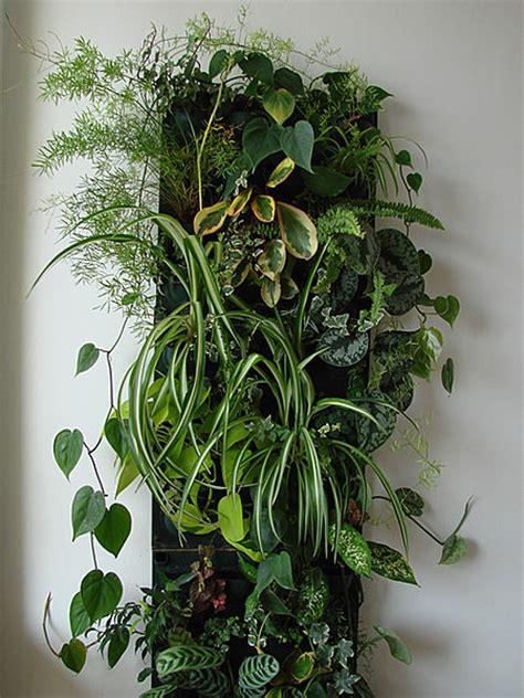 le mur vegetal des plantes  la verticale galerie