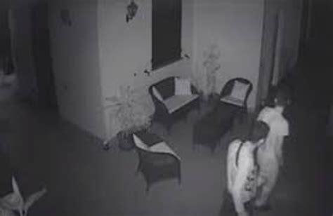 Ladri In Casa by Infernetto Vede I Ladri In Casa Grazie Alle Telecamere