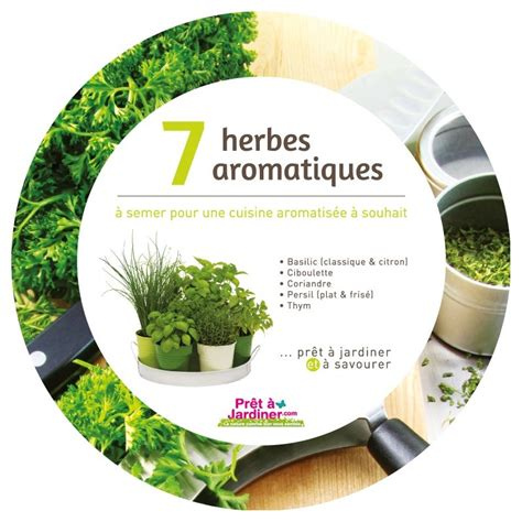 herbes aromatiques cuisine plateau 7 herbes aromatiques et aromates