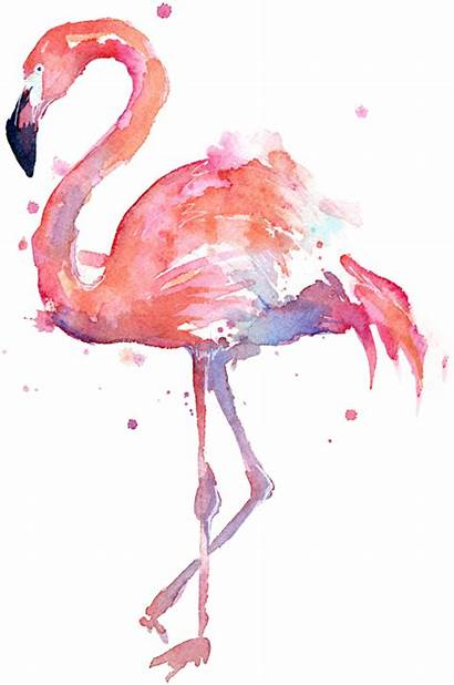 Flamingo Clipart Transparent Flamingos Sticker Webstockreview Challenge