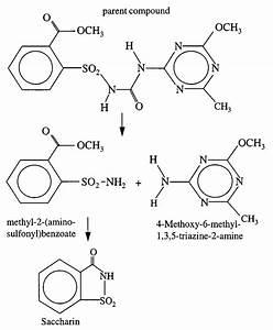 An Example Of Hydrolysis Reaction Pathways Of Metsulfuron