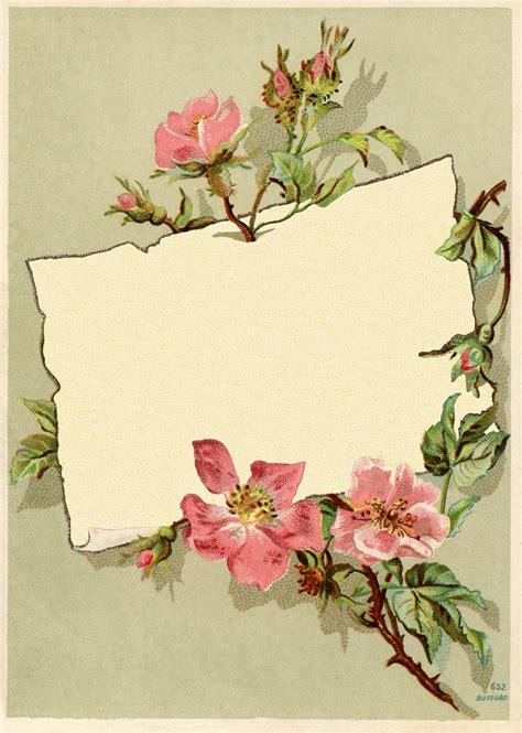 vintage rose frame images  graphics fairy
