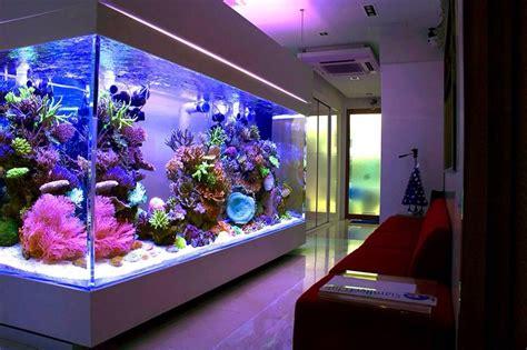 Home Aquarium Design Ideas by Home Reef Aquarium Fish Aquaria P Rn Aquarium