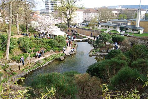 Japanischer Garten In Kaiserslautern Bilder by Das Kirschbl 252 Tenfest Im Japanischen Garten Kaiserslautern