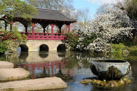 Japanischer Garten  Leverkusen I Foto & Bild