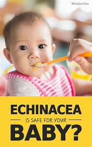 Chinese Gender Chart 2016 Due Date Is Echinacea Safe For Babies