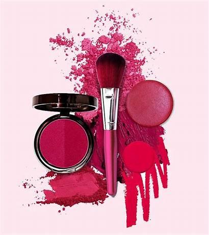Makeup Skin Oily Stylecraze Face Links Care