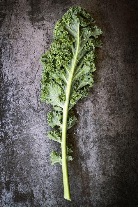 cuisiner chou kale recettes de chou kale
