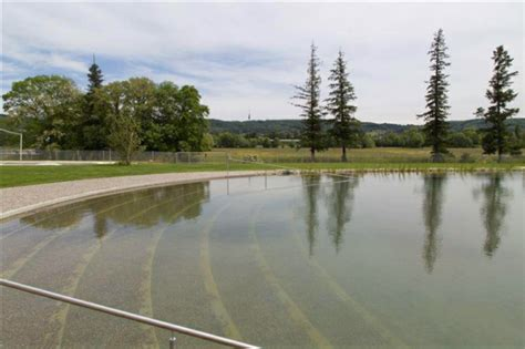 pool ohne chlor garten pool ohne chlor naturbad riehen