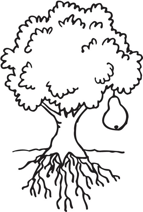 Coloring Clip by Clipart Coloring Tree Clipground