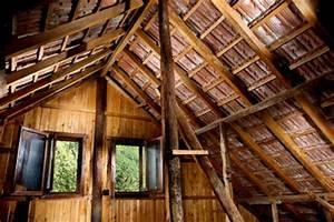 Marder Auf Dachboden : marder vertreiben vom dachboden so geht 39 s ~ Articles-book.com Haus und Dekorationen