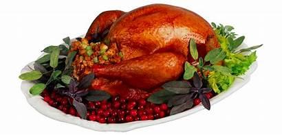 Turkey Pngimg