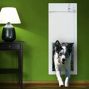 Power pet electric pet door gives fido the freedom he for Automatic locking dog door