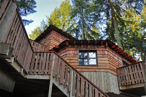 Luxury Treehouses Coming To Elveden Forest-under The
