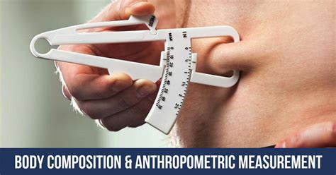 composition body measurement anthropometric things
