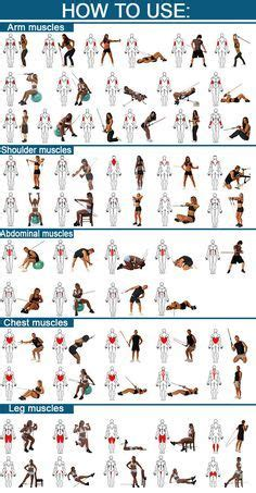 printable resistance band chart  full color poster features  resistance tubing exercises