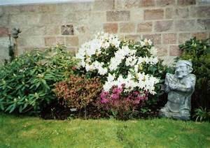 Welche Pflanzen Passen Gut Zu Hortensien : welche st hle passen zu holztisch esstische aus ~ Lizthompson.info Haus und Dekorationen