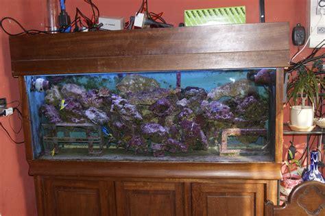 vente cause sant 233 aquarium r 233 cifal 450 l annonce gratuite poissons et aquariums