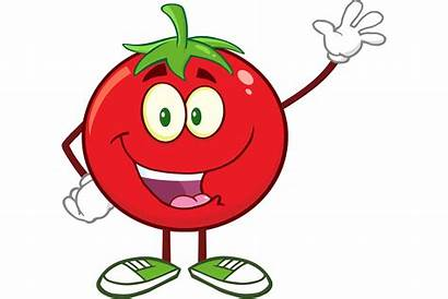 Animation Vector Introduction Cartoon Guide Tomato Character