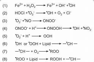 Key Redox Reactions In Living Systems  23    1  Fenton