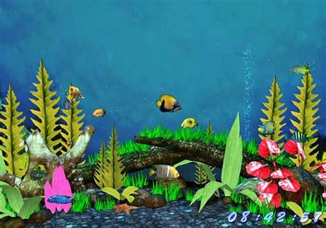 scenery wallpaper fond d 233 cran aquarium anim 233 gratuit windows 7