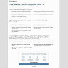 Quiz & Worksheet  Diffusion And Osmosis Biology Lab Studycom