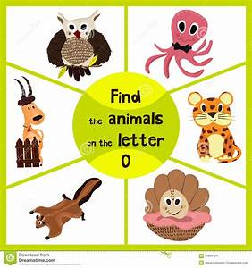 cute letter page stock image cartoondealercom 5422555 With animals with the letter o in their name