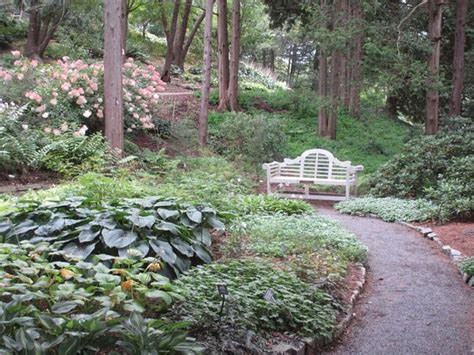 Garden Ithaca by Beautiful Wooded Garden Picture Of Cornell Botanic