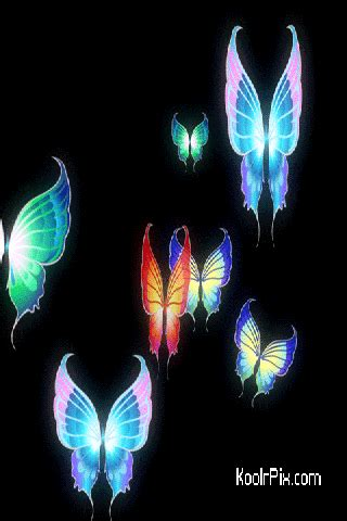 Animated Butterfly Wallpaper Gif - gif images home 187 animated butterfly pictures images