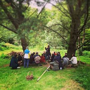 Agroforestry Design Forest Gardening Food Forests Design Course The