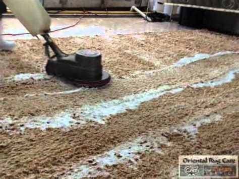 how to clean shag rug notice a professional shag rug cleaning company