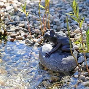 Springbrunnen Für Teich : solar wasserspeier frosch nsp10 solar springbrunnen f r teich ~ Eleganceandgraceweddings.com Haus und Dekorationen