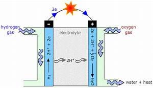 Diagram For Hydrogen Gas : how to make a hydrogen fuel cell build a hydrogen fuel ~ A.2002-acura-tl-radio.info Haus und Dekorationen