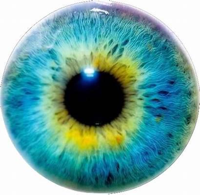 Eye Lens Transparent