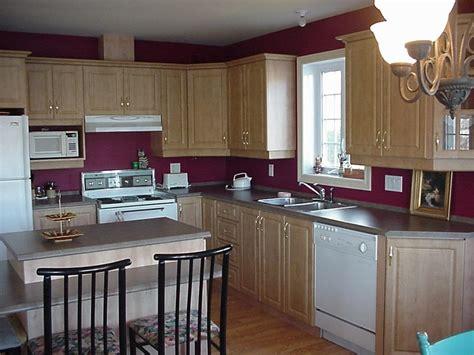 cuisine a la cagne moucherons dans ma cuisine 28 images comment chasser