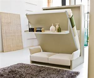 Nuovoliola 10 resource furniture wall beds murphy beds for Queen murphy bed with sofa